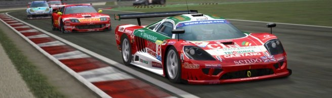 How much FFB can you feel in GTR2? 1/1000th of a percent.